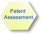 Patent Assessment