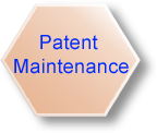 Patent Maintenance